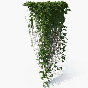 3D realistic ivy model