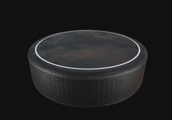 hockey puck 3D