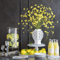 Yellow flowers and lemons