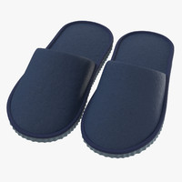 3D house slippers 01