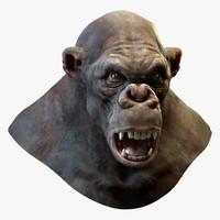 Gorilla Head (No Hair)