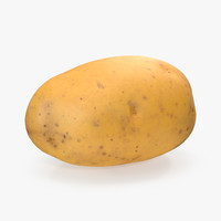 unpeeled raw potato 3D model