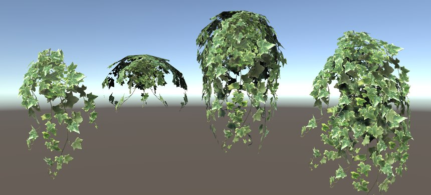 vines ivy model