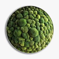 panel moss boulder 3D