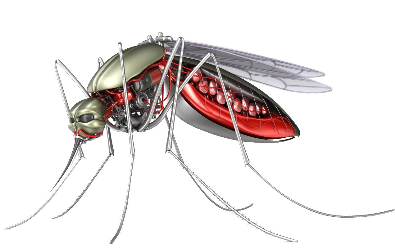 cyber mosquito robot bloodsucker 3D model
