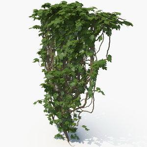 3D realistic ivy wall model