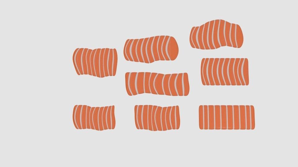 3D model salmon pack
