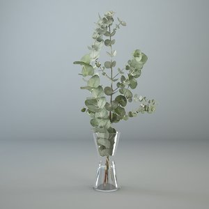 eucalyptus glass vase 3D model