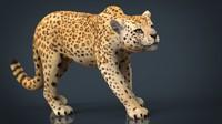 3D model jaguar africa