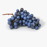 scan grape realistic 3D model