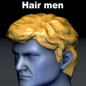 3D hair head mesh