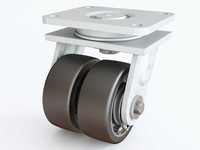 3D castor 01 model