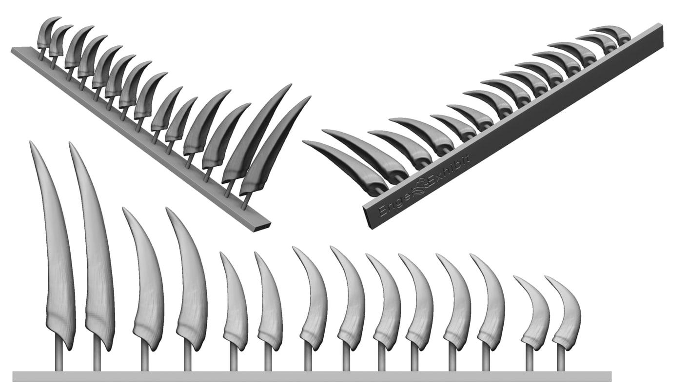 claws sinosauropteryx prima 3D
