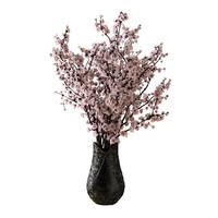 Sakura in Vaze