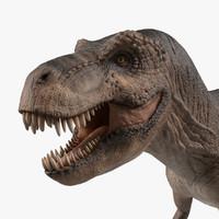 tyrannosaurus dinosaur animation 3D model