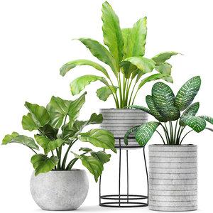 3D plants pot model