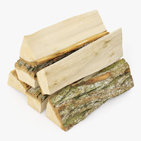 Bundle of Firewood 01