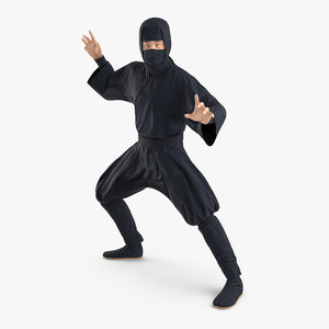 3D japan ninja fighting pose