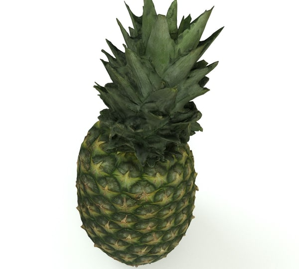 pineapple pine apple 3D model