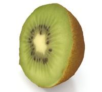 sliced kiwi model