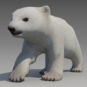 polar bear 3D