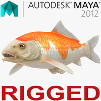 Harivake Koi Fish Rigged for Maya