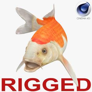 3D harivake koi fish rigged