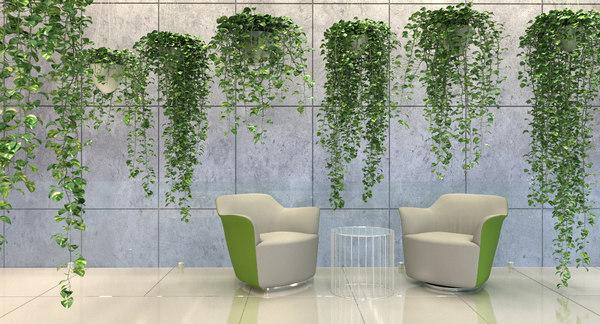 3D model tree plant