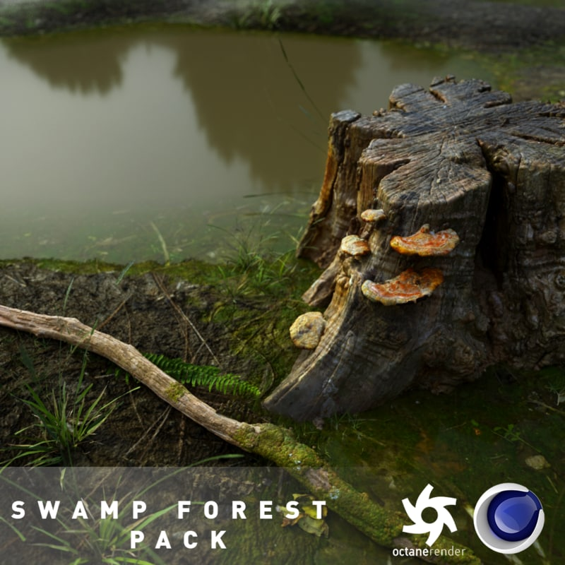 pond swamp scene forest 3D model