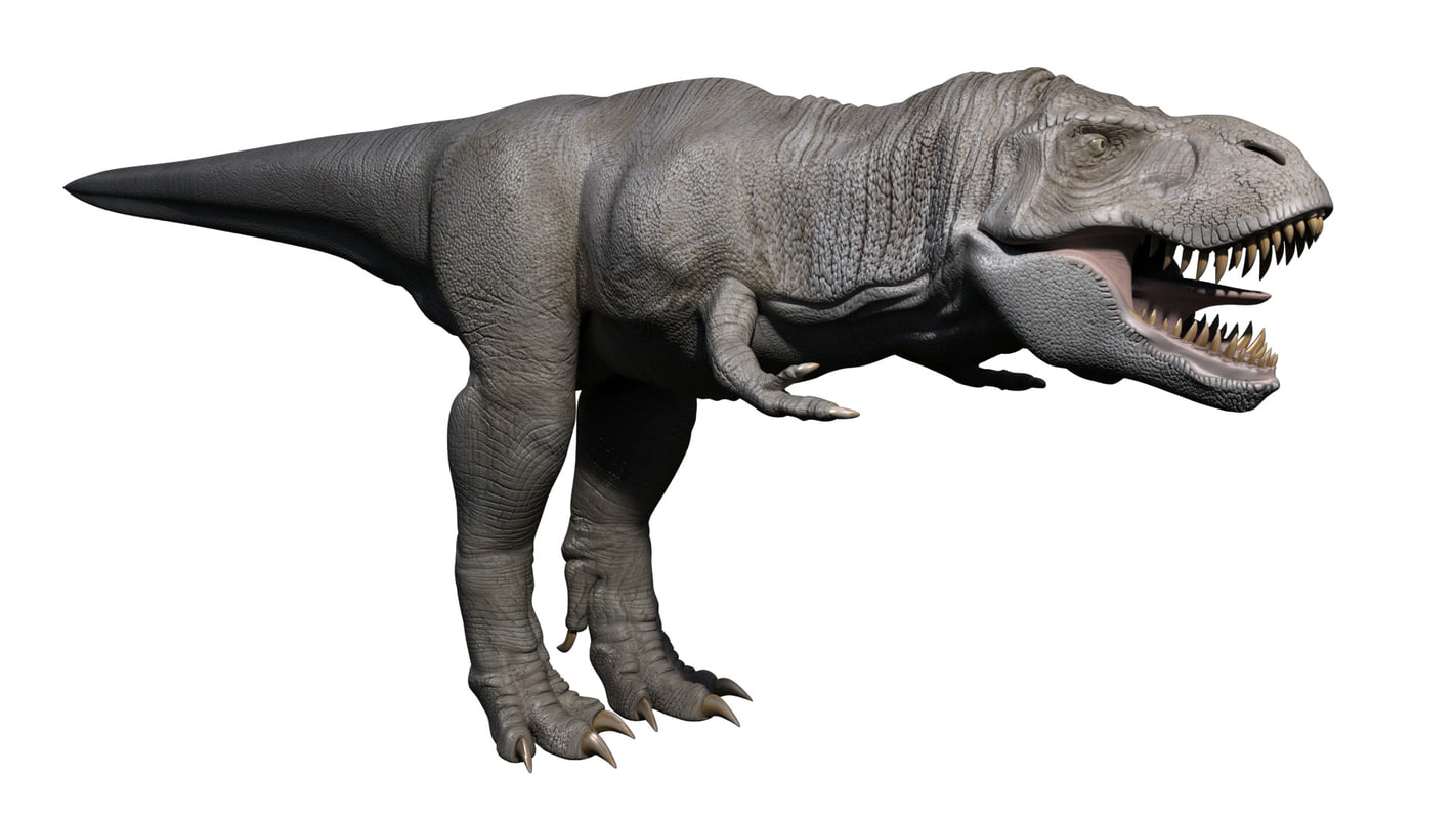3D t rex rigging neutral model