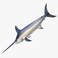 3D swordfish