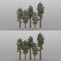 5 sequoia trees 3D model