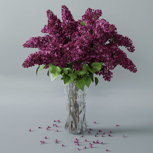 3D lilac