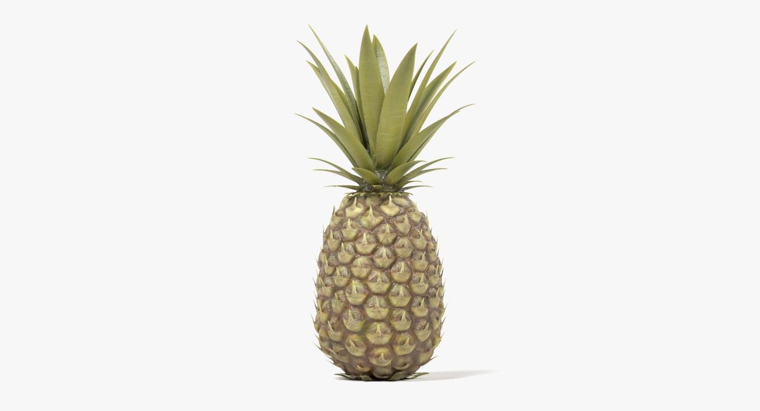 pineapple pine apple 3D