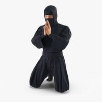 ninja rigged 3D