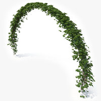 realistic ivy arch 3D model
