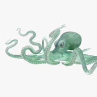 3D large blue octopus