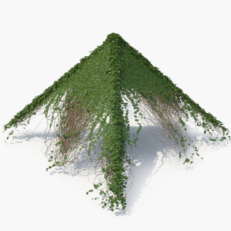 3D model realistic ivy pyramid