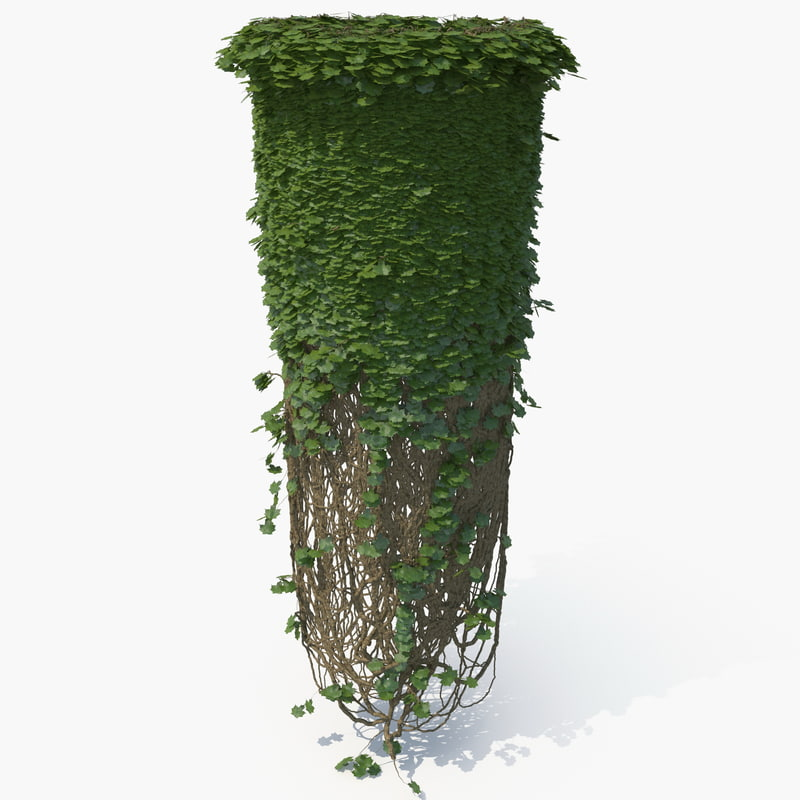 realistic ivy column model