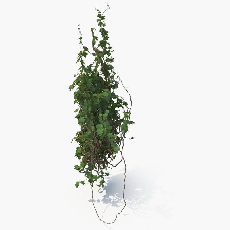 3D realistic ivy column