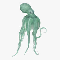Blue Octopus Swiming Pose 3D Model