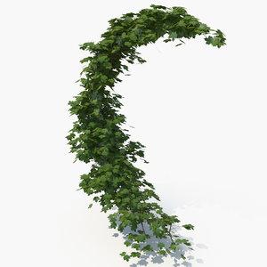 realistic ivy crescent 3D