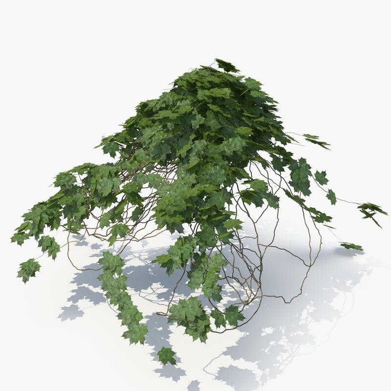 realistic ivy hut 3D model