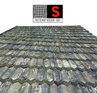 3D wooden roof scan