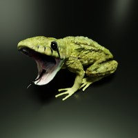 snakes frogs 3D model