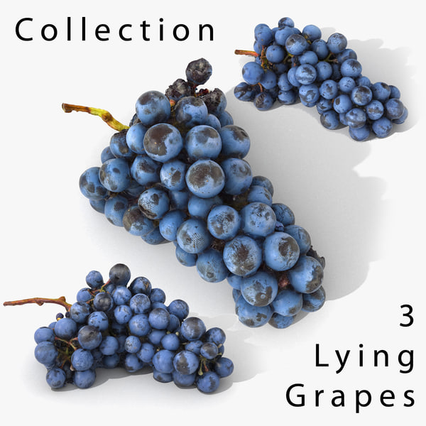 3D scan grape realistic
