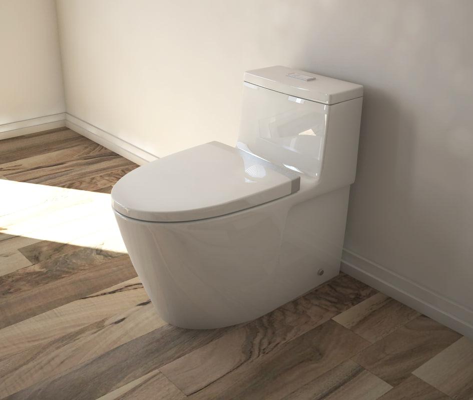 toilet american model