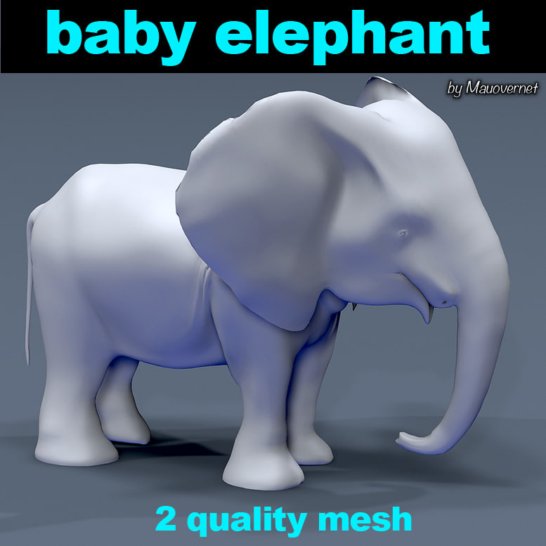 3D baby elephant mesh model