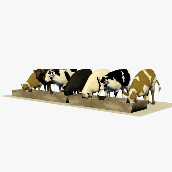 group 7 cows eating 3D