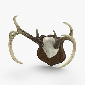 mounted-antlers-02 model